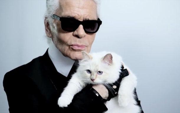 Karl Lagerfeld Choupette  Top 5 Luxury Fashion Designers karl lagerfeld choupette