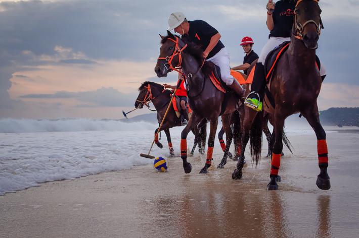 club-deluxe-luxury-sports-equestrian-fun  Luxury Sports - Equestrian Fun club deluxe luxury sports equestrian fun