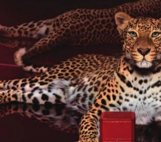 Top Luxury Brands Cartier