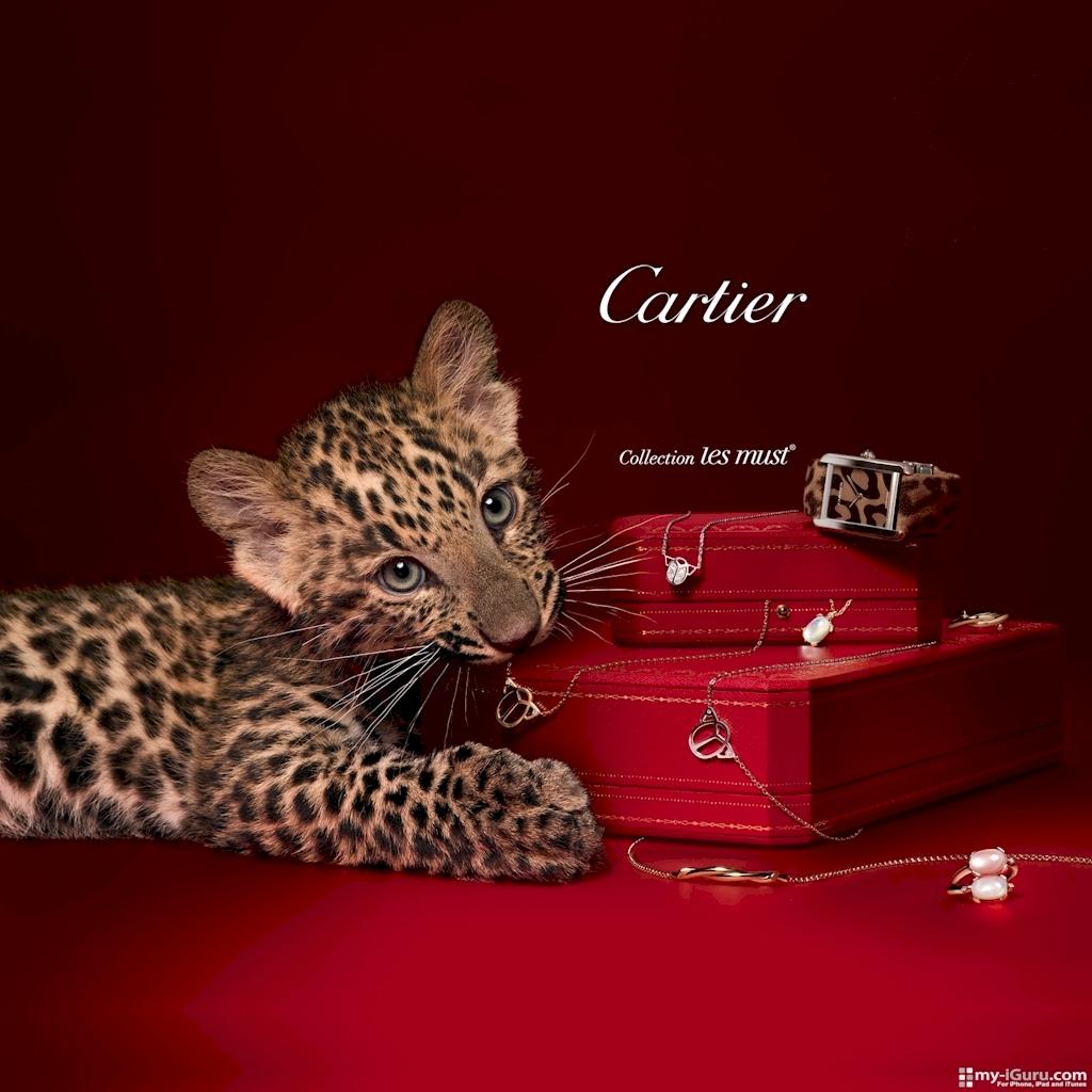 Top Luxury Brands  Cartier  Top Luxury Brands | Cartier Top Luxury Brands Cartier 18